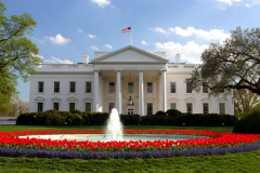 The White House. Белый Дом